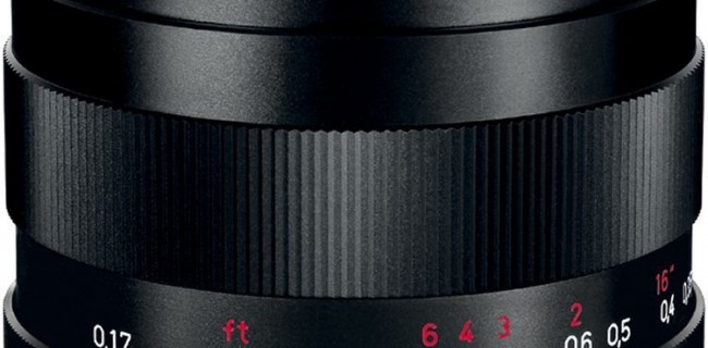 【祝35mm】私のまわりのカメラクラスタが選ぶ単焦点レンズ