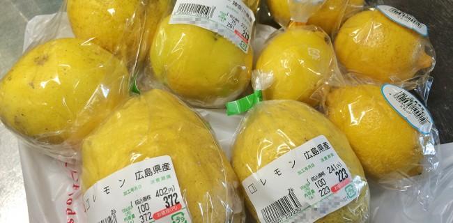 国産レモン仕事始め